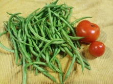 haricot vert and early tomatoes